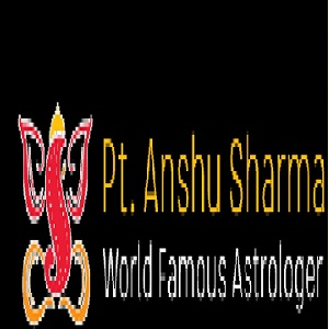 profile of Best Vashikaran Astro