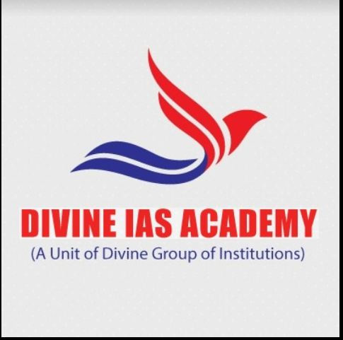 profile of Divine Academy