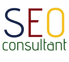 Why Do You Need A SEO Consultant for online business growth?
