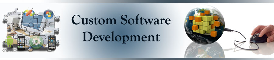 Power Custom Software Development to Grow your Bus...